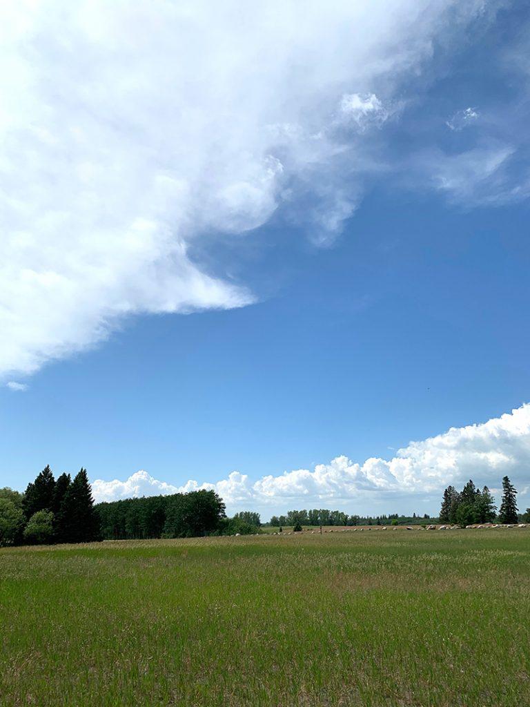 Bird's Hill Provincial Park